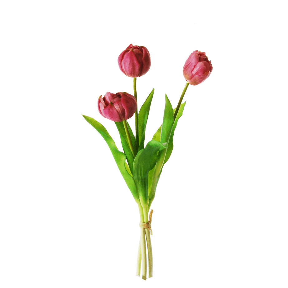 Peony-tulips in a bundle of 3 ...